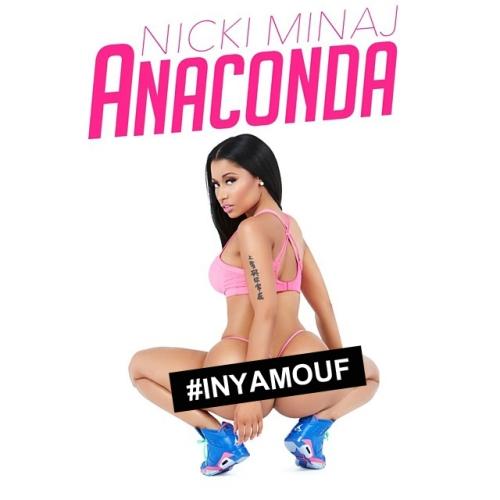 nicki-anaconda